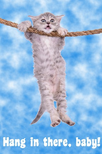 Hang in There Baby! Cat Retro Motivational Poster 12x18 inch