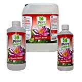 GREENLIGHT GUYS Plant Magic Bloom Boost 1 Litre Pippet