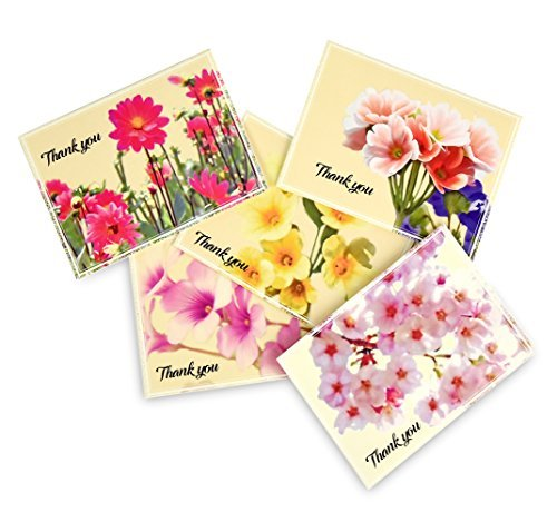 Thank You Cards Set - 50 Cards 50 Colored Envelopes, 5 Floral Designs Greeting Cards, Blank Foldable Note Cards Watercolor Florals Assorted Pack Greeting Cards for All Occasions 4x6 inches By Colorona