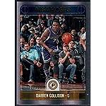 Basketball NBA 2017-18 Panini Hoops Premium Box Set #90 Darren Collison /199.