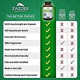 Zazzee Whole Fruit Blueberry Extract, 5000 mg