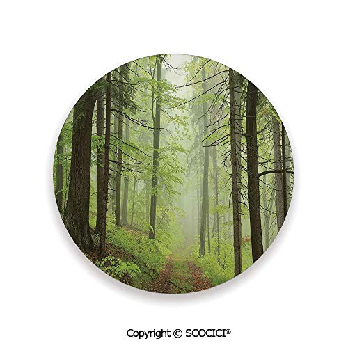 Ceramic Coaster With Cork Mat on the back side, Tabletop Protection for Any Table Type, round coaster,Outdoor,Trail Trough Foggy Alders Beeches Oaks Coniferous,3.9