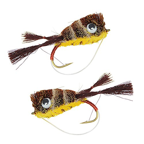 (Bass Deer Hair Frog Popper Fly | Size 2 | 2 Pack (Kicker Frog))