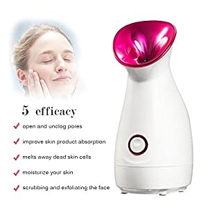 Facial Face Steamer Fairycity Nano Humidifier Warm Mist Hydration Atomizer Skin Care Salon Moisturize Spray Unclogs Pores Vapor Clear Blackheads Suction Acne Home Sauna Spa Valentine's Day Gift