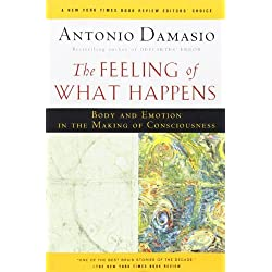 The Feeling of What Happens: Body and Emotion in the Making of Consciousness by Damasio, Antonio (2000) Paperback