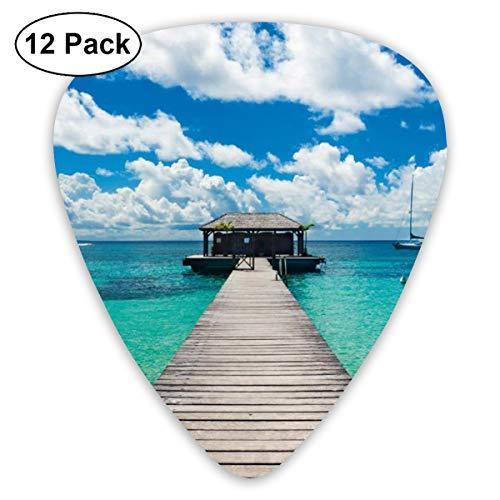 - LiuYiFeii Caribbean Seascape 12pcs Guitar Picks Rock Band Mix Guitar Picks Musical Accessories,Rock Band Guitar Picks