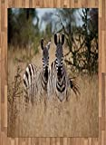 Africa Area Rug by Lunarable, Kenya with Zebras in the High Bushes Looking at the Camera Striped Unique Animal, Flat Woven Accent Rug for Living Room Bedroom Dining Room, 5.2 x 7.5 FT, Multicolor