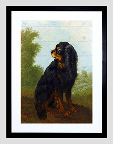 PAINTING PORTRAIT OUDRY CAVALIER KING CHARLES SPANIEL FRAMED PRINT F97x11436 - Cavalier King Charles Spaniels Framed