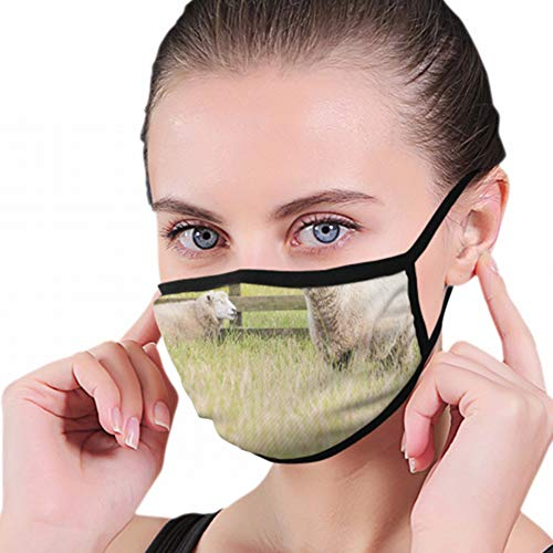 Dust Mask Sheep Farming New Zealand Agricultural Industrial Anti Pollution Breathable Respirator Mask Grade Flu Mask Carbon Activated Filtration - Reusable Washable - Comfy Polyester Adjustable from Cool pillow