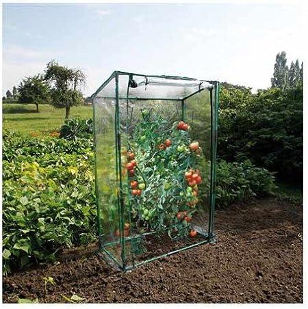 Invernadero de tomates: Amazon.es: Jardín