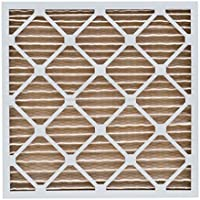 TheSafetyHouse Merv 11 Pleated Filter (16 x 16 x 2)