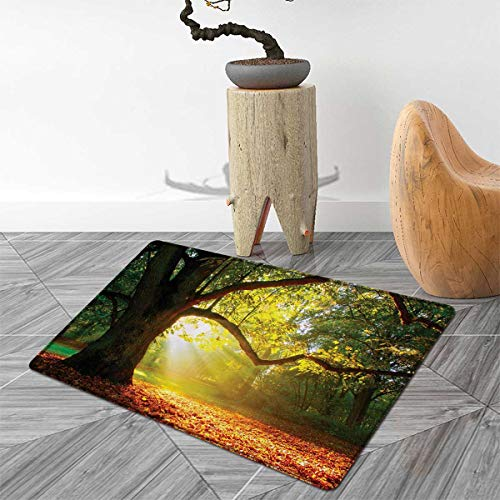 Leaves Door Mat Indoors Majestic Mighty Oak Tree with Largely Broader Leaves Forest Sun Rays Nature Customize Bath Mat with Non Slip Backing 2'x3' Orange Green Brown ()