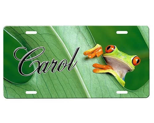 - onestopairbrushshop Frog License Plate