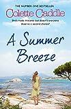 img - for A Summer Breeze book / textbook / text book