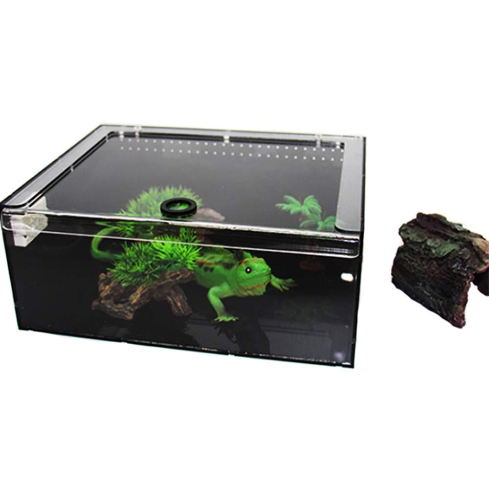 DINGG Acrylic Reptile Terrarium,Geckos Lizard Habitat large12cm30cm23cm