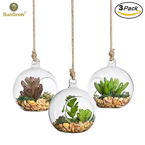 3 Hanging Glass Terrariums by SunGrow – Beautiful Spherical Air Plant Orb – Handmade, heat-resistant glass – Create refreshing atmosphere in Terrace G…