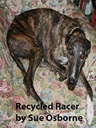 Recycled Racer