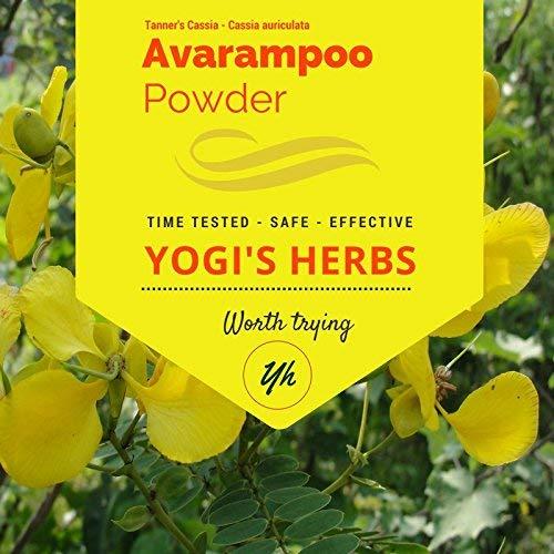 YOGIS HERBS Premium Avarampoo Powder (Senna Auriculata) – 1 lb Fresh & Pure