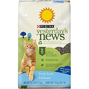 Purina Yesterday's News Fresh Scent Non-Clumping Cat Litter - (1) 26.4 lb. Bag