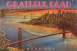Amazon Com 24x36 Grateful Dead Dead Set View Of San