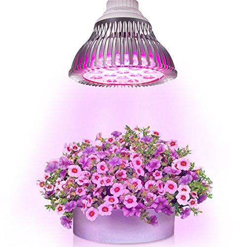 Opinions On Led Grow Lights
