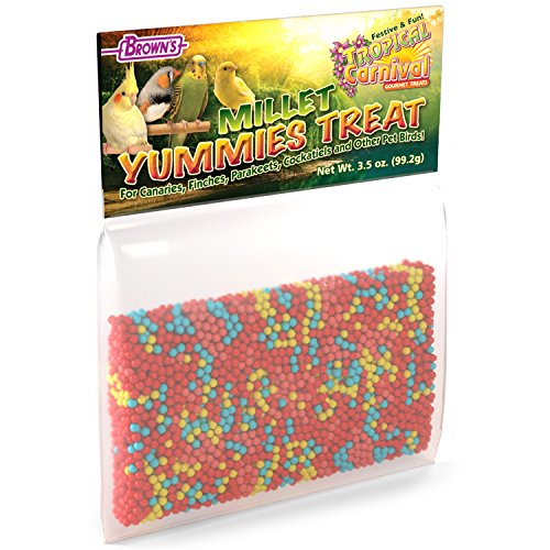 F.M. Brown'S Tropical Carnival Millet Yummies Treat For Canaries, Finches, Parakeets, Cockatiels And Other Pet Birds, 3.5-Oz Bag