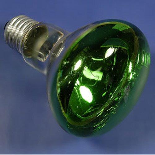 Chauvet Bulbs - 4