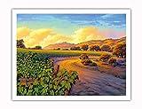 Pacifica Island Art - Vineyard Sunset - Wine Country Art by Kerne Erickson - Fine Art Print - 20in x 26in