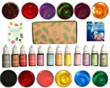 Arts & Crafts : how to look PRETTY Bath Bomb Soap Dye - 12 color Food Grade Skin Safe Baby Friendly Slime Playdoh Soap Making Supplies