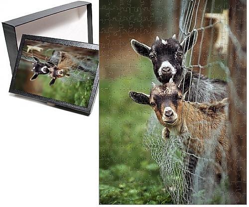 Goat Jigsaw Puzzle