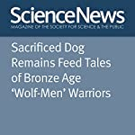 Sacrificed Dog Remains Feed Tales of Bronze Age 'Wolf-Men' Warriors | Bruce Bower