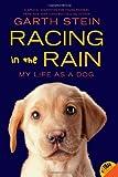 Racing in the Rain, Garth Stein, 0062015761