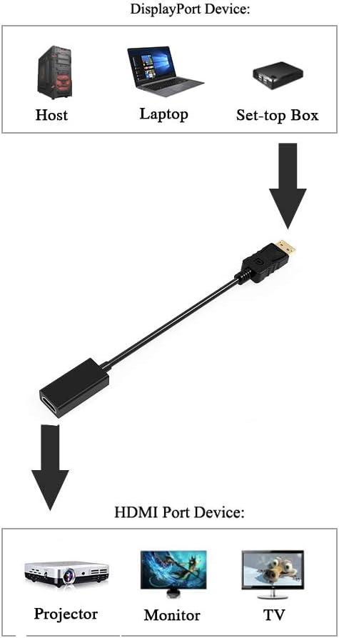 HDTV zu HDMI Adapter mit Audio Konverter Unterst/ützung 1920/×1080P@60Hz f/ür PC DP 1.2 GANA DisplayPort auf HDMI Adapter Laptop Monitor 1 Pack Projector 26cm Vergoldet DisplayPort