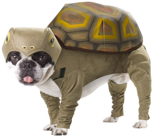 Animal Planet PET20102 Tortoise Dog Costume, Medium - coolthings.us