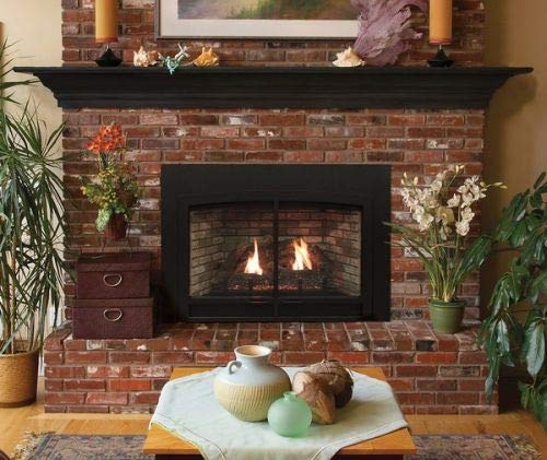 Empire Innsbrook Large Direct-Vent Clean Face MV Fireplace Insert - NG