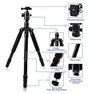 "Triple Tree 68.5"" Camera Tripod Monopod Light Weight Portable Tripod with Ball Head and Carry Case Load Capacity 33lbs/15KG"