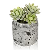 4 inch Realistic Artificial Green Succulent Plant Arrangement in Vintage Distressed Gray Ceramic Jar Pot