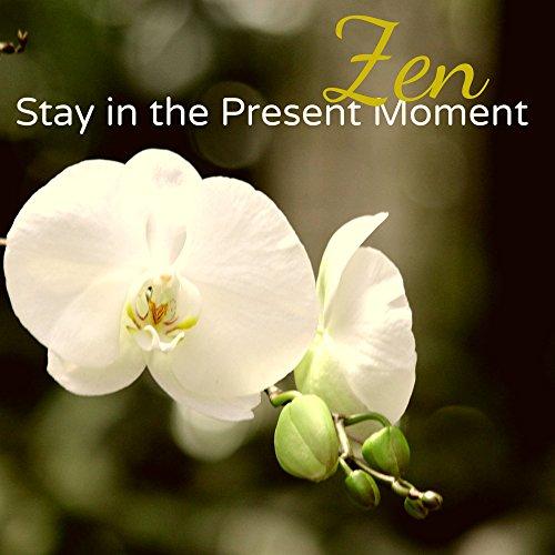 Amazon lotus flower yoga song asian meditation music lotus flower yoga song mightylinksfo