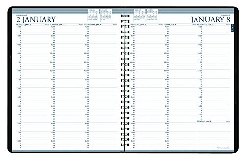 House of Doolittle 2020-2021 Two-Year Professional Weekly Planner, Black, 8.5 x 11 Inches, January - December (HOD272002-20)