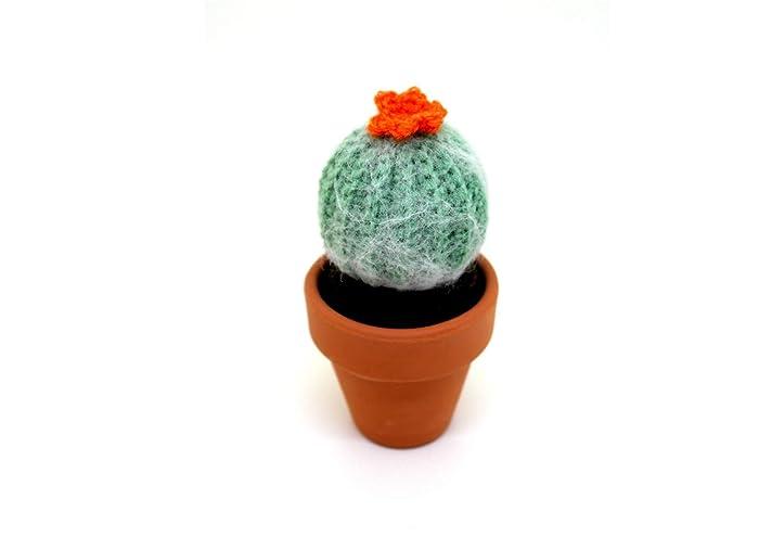 Tutorial - Sottobicchieri cactus ad uncinetto (sub English y ... | 495x700