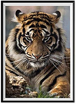 5D Full Diamond Painting Crystal Embroidery Pictures Arts Craft,Aggressive Tiger