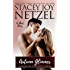 Autumn Glimmer (Romancing Wisconsin Book 8)