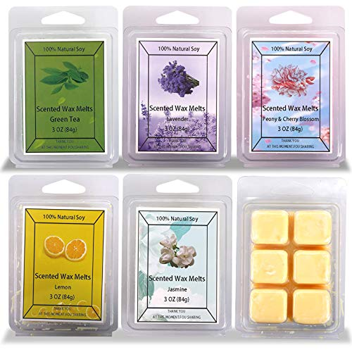 Onlyhome Scented Soy Wax Melts -Set of 6 (3 oz) Assorted Wax Warmer Cubes/Tarts