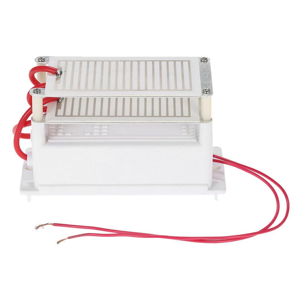 Anself ACV g Generador de Ozono Portátil Doble Integrado Placa de Cerámica