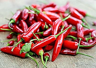 50+ ORGANICALLY GROWN Serrano Chili Hot Pepper Seeds Heirloom NON-GMO, Spicy, Delicious and Fragrant! From USA