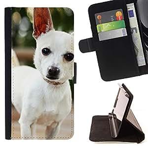 Momo Phone Case / Flip Funda de Cuero Case Cover - Perro lindo Chihuauah - HTC One M9