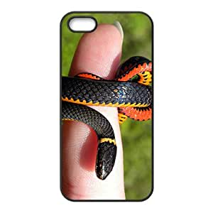 Snake Hight Quality Plastic Case for Iphone 5s