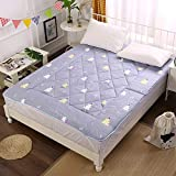 C&DIAN Folding Mattress,Mattress Pad,Comfort Portable Student Household Bedroom-B 90x200cm(35x79inch)