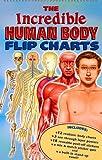 The Incredible Human Body Flip Charts, Traditional, 2764114389