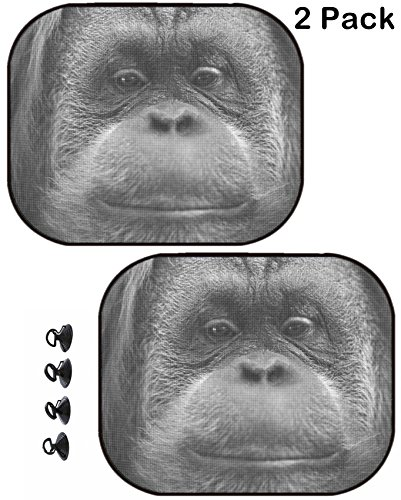 Msd Car Sun Shade Protector Side Window Block Damaging Uv Rays Sunlight Heat For All Vehicles  2 Pack Orang Utan Monkey Portrait While Looking At Yuo Image 33721268 Customized Tablemats Sta